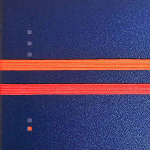 Red orange elastic band